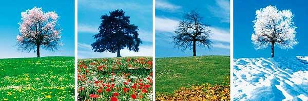 saisonss